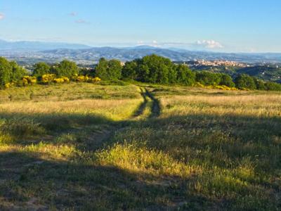 Monte Pacciano Bosco Sant'Orfeto guida MTB escursioni Perugia Umbria